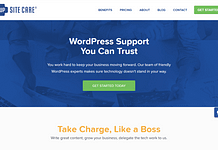 WP-Site-Care-Support-Theme