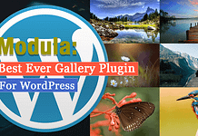 Modula: Best Ever Gallery Plugin for WordPress