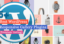 5+ Best WordPress Gallery Plugins (Premium Listing)