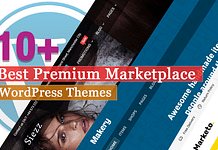 Best Premium Marketplace WordPress Themes