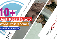 Best Premium Retail Shop WordPress Themes