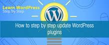 How to step by step update WordPress plugins