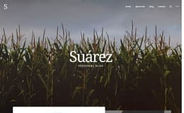 Suarez - Creative WordPress Blog Theme