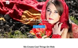 One Paze - Best Free One Page WordPress Themes