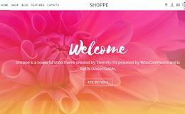 Shoppe - Premium WordPress WooCommerce Theme
