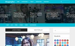 Writer - Professional WordPress Theme for Writers