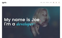 Ignis - Modern Portfolio WordPress Theme