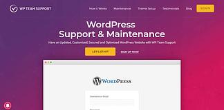 WP-Team-Support-Customization-Theme