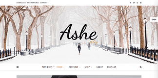 Ashes - Free WordPress Blog Theme