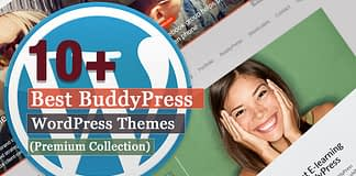 Best Premium BuddyPress WordPress Themes