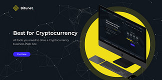 Bitunet - Cryptocurrency Elementor WordPress Theme WordPress Theme