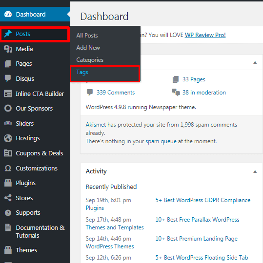 How to add Tags in WordPress posts?