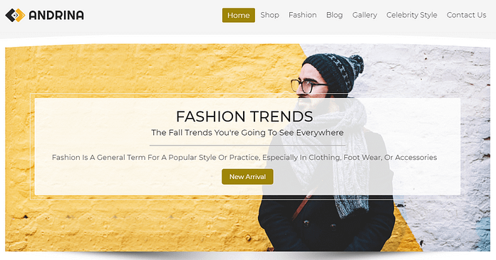 Andrina - Premium Fashion WordPress Theme