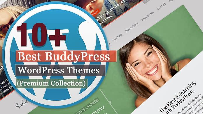 Best Premium BuddyPress WordPress Themes