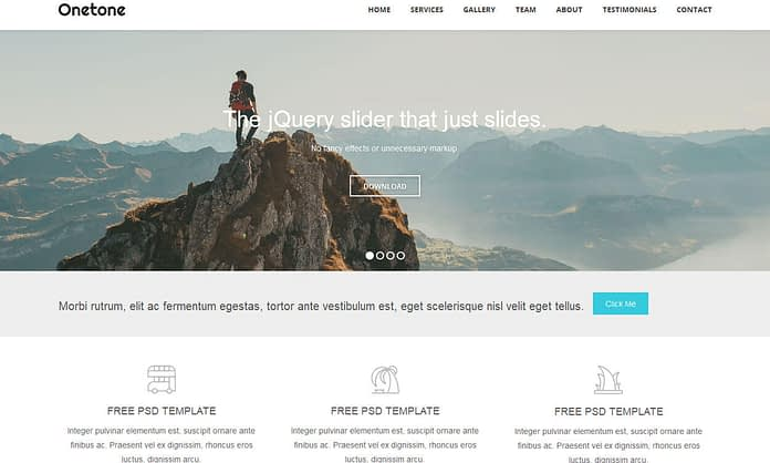Onetone - Best Free One Page WordPress Themes 2017