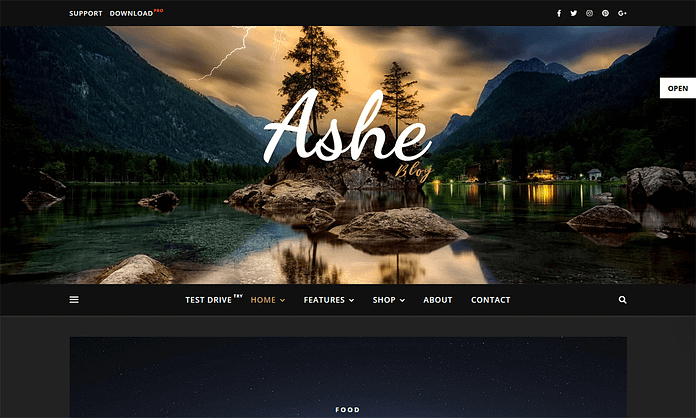 Ashe Blog Pro