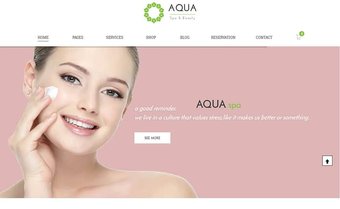 aqua-premium-WordPress-theme