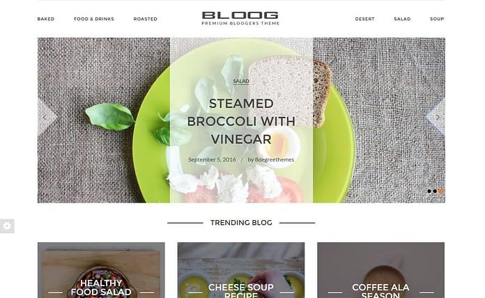 bloog-pro-premium-wordpress