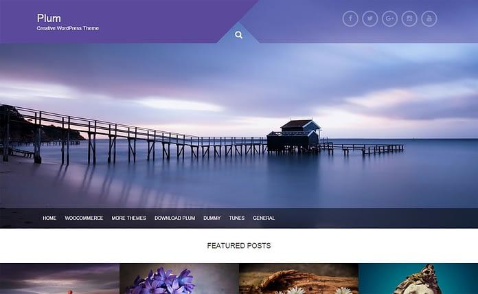 Plum - Unique Multipurpose WordPress Theme