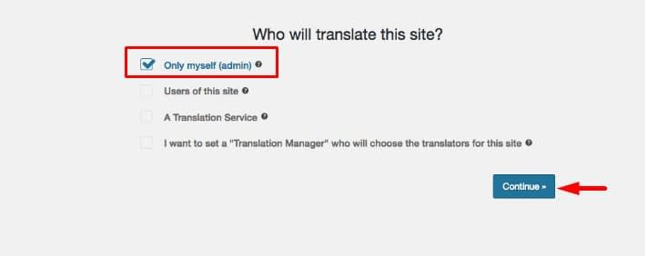 Use Automatic Machine Translation With WPML. - How to Use Automatic Machine Translation With WPML