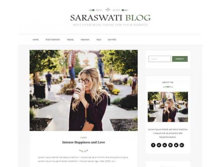 Saraswati Blog WordPress Theme - 30+ Best Free WordPress Personal/Professional Blog Themes for 2019