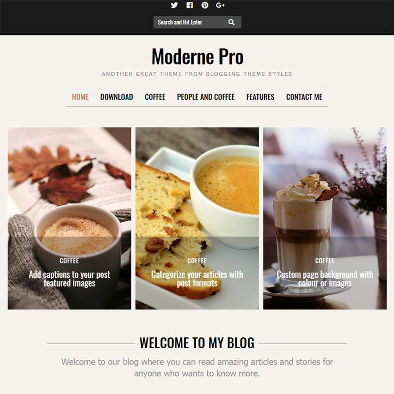 moderne pro - 15 Best WordPress Feminine Blog Themes