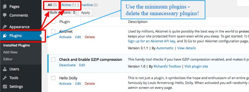 use-proper-number-of-wp-Plugins