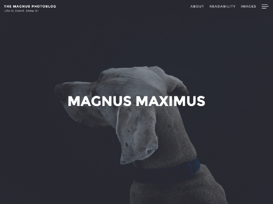 Magnus - Free Photography WordPress Theme