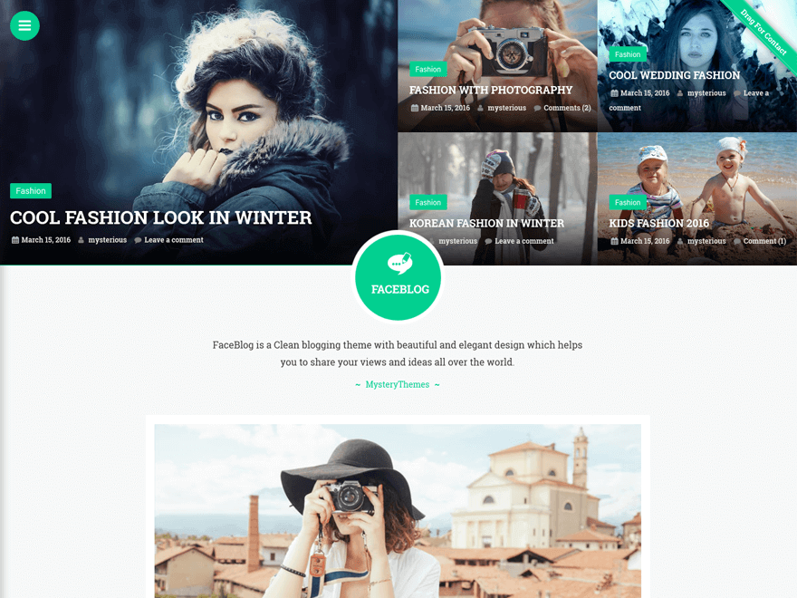 Faceblog - Free Photography WordPress Theme
