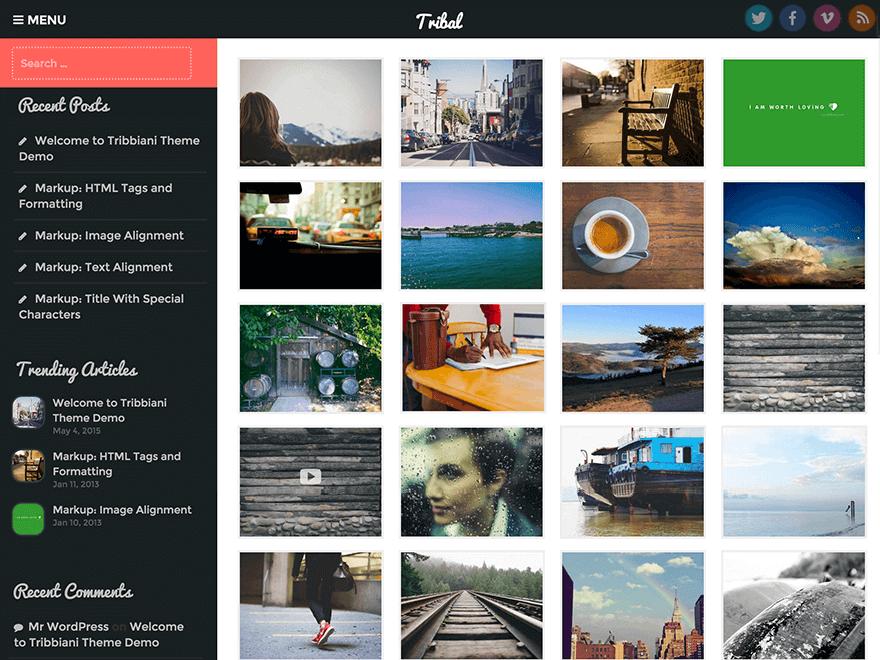 Tribal - Free Photography WordPress Theme