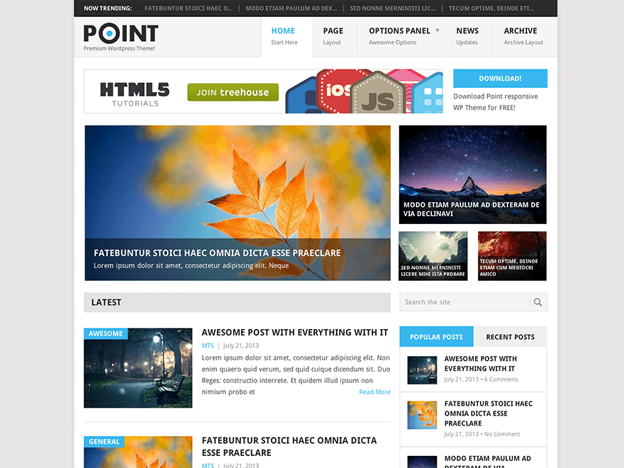 Point - 50+ Best Free Responsive WordPress Themes 2019