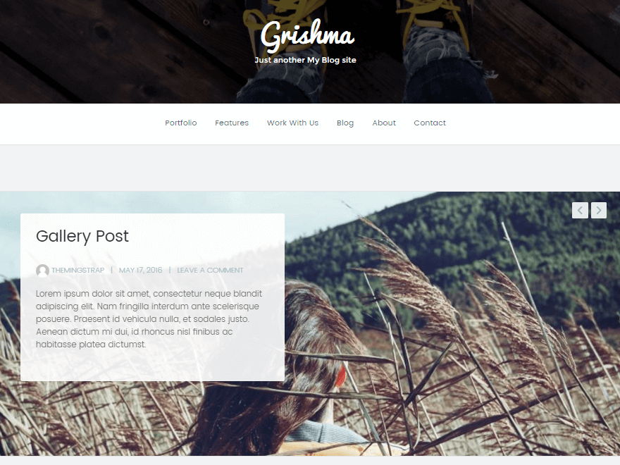 grishma - 11+ Best Free WordPress Themes July 2016 – WPAll Club