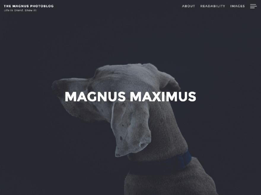 Magnus - 23+ Best Free Photography WordPress Themes & Templates 2019