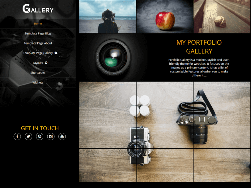 Portfolio Gallery - 30+ Best Free WordPress Photography Themes for 2019
