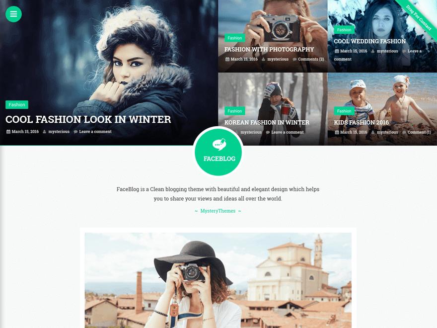 faceblog - 23+ Best Free Photography WordPress Themes & Templates 2019